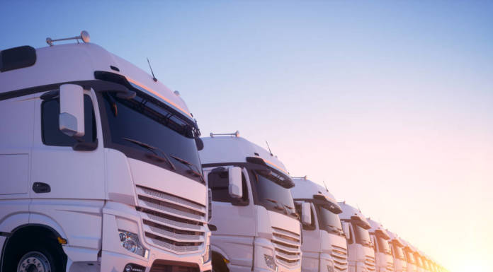 Branża transportowa w kryzysie. Jak ratować firmę w czasach koronawirusa?